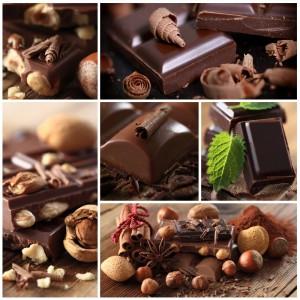 Schokolade als Leckerlie für den Malteser