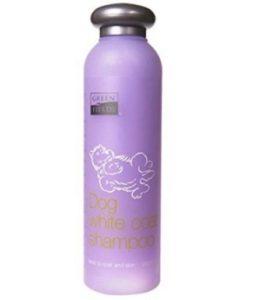 Shampoo für Malteser Hunde