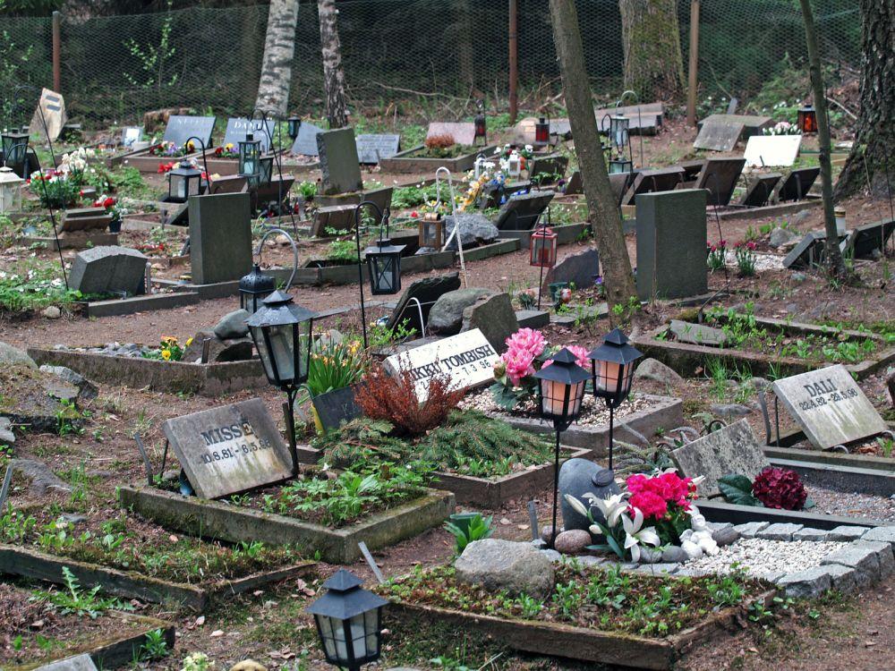 Tierfriedhof Malteser