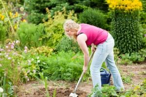 Meinen Malteser im eigenen Garten vergraben