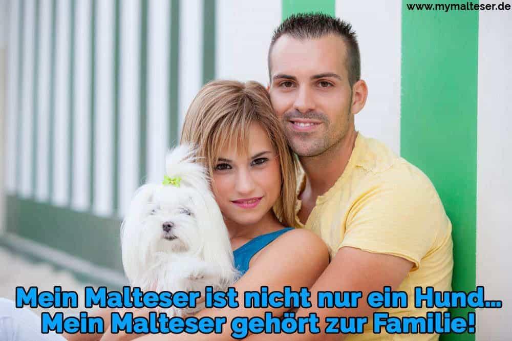 Eine Familie hält ihren Malteser