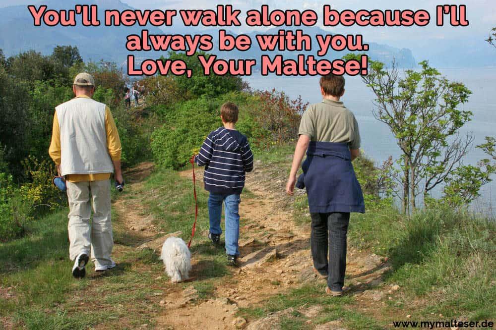 Eine Familie geht mit ihrem Malteser